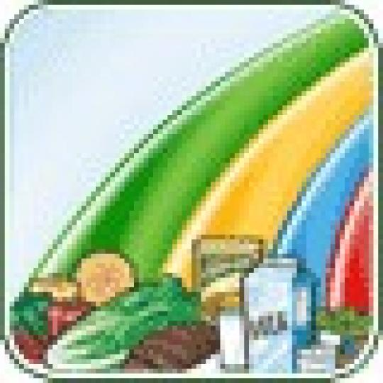About Us Sample Menu Link To Canada Food Guide Child