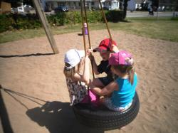 Tire swing at the Park